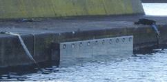 港湾・漁港構造物補修・補強工法